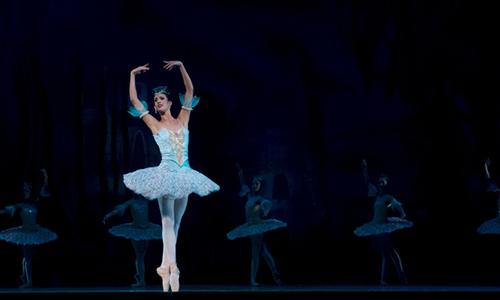 表演及舞蹈专业方向